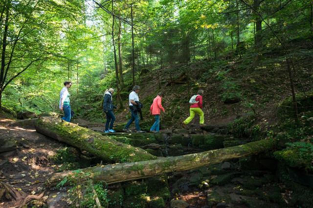 Naturpark-Augenblick-Runde Holzbronn_Bachüberquerung