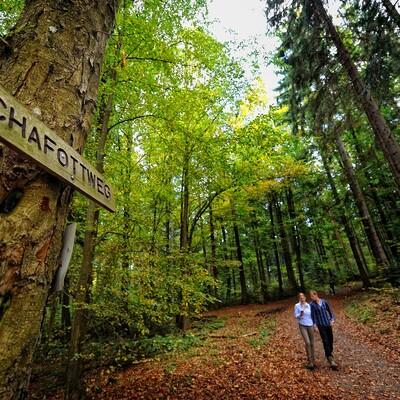 Mann und Frau beim Geocachen auf dem Schafottweg