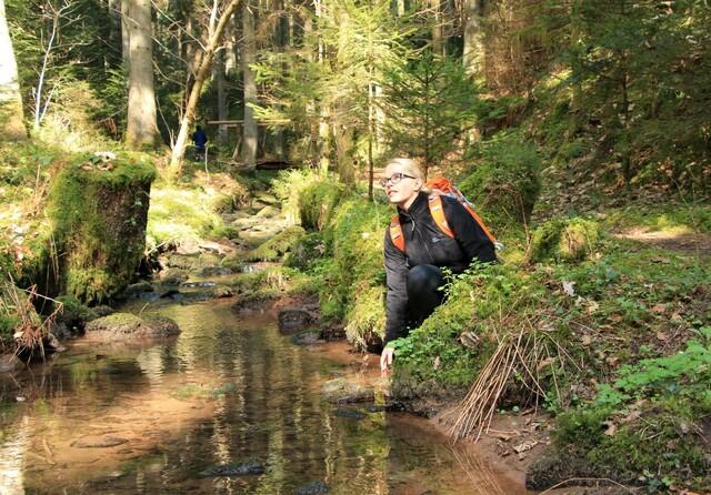 Wandern auf dem Wasser- Wald- und Wiesenpfad
