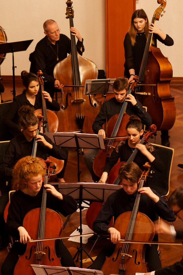 Junge Philharmonie Calw, Celli & Kontrabässe